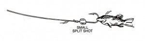 Removable Split Shot Wounded Minnow Rig