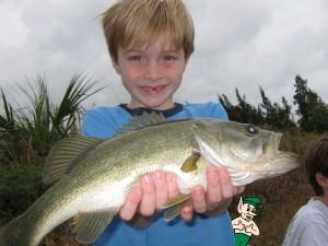 Wills Fish