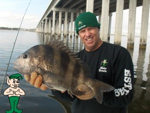 Captain Scott Sheepshead
